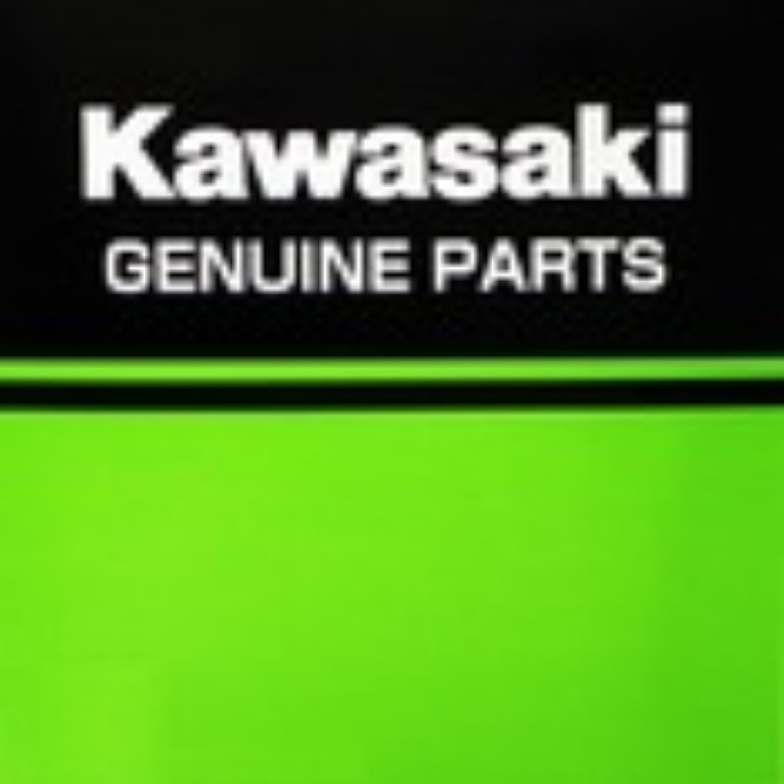 車種別600cc-750cc Kawasaki純正オイルフィルター 160970008