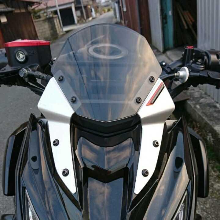 カワサキ z800用 リゾマ ヘッドライトフェア リングスクリーン